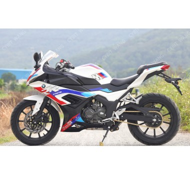 BMW S1000 in 400cc