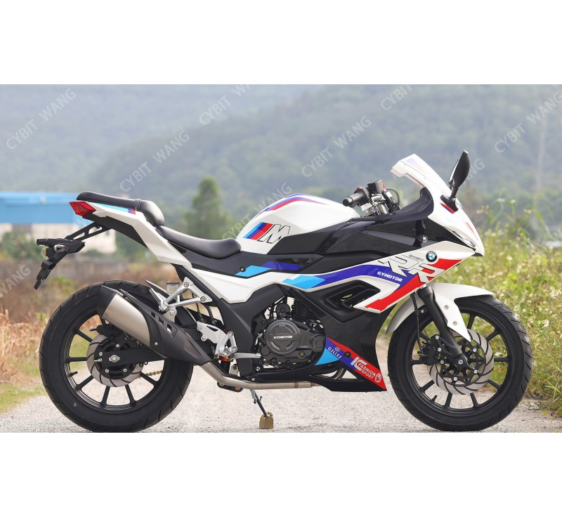 BMW S1000 in 250cc